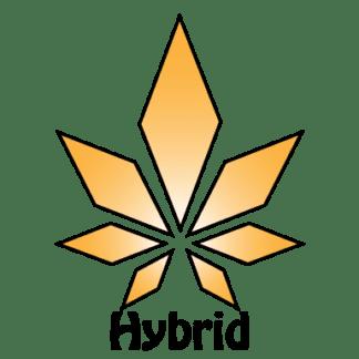 Hybrid Pre-Roll